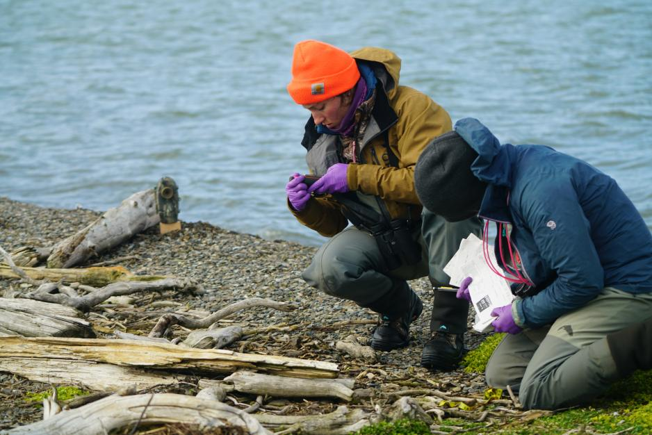 u.s._fws_collecting_nest_data_for_the_common_eider_research_project_in_anwr.jpg?itok=_Rt4TSfO&profile=RESIZE_1200x
