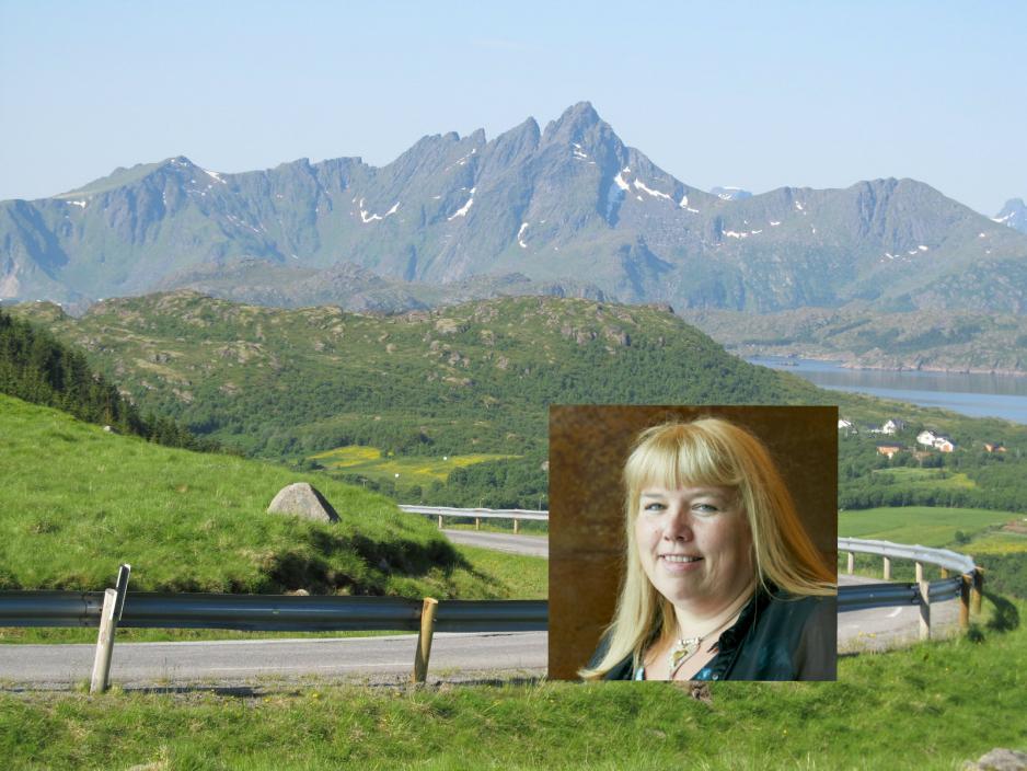 43642309 Samferdsel og vei utgjør store årlige utgifter i Nordland. I år er  situasjonen ekstra krevende for fylkesråd Beate Bø Nilsen og henne  skolleger i ...
